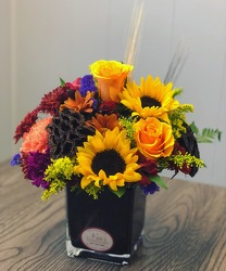 NF Fall Harvest Cube from Nate's Flowers in Casper, WY