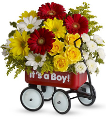 Baby's Wow Wagon by Teleflora from Nate's Flowers in Casper, WY
