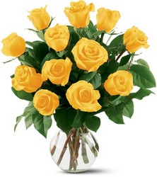12 Yellow Roses from Nate's Flowers in Casper, WY