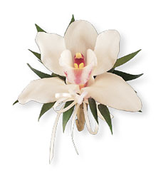 Cymbidium Orchid Corsage from Nate's Flowers in Casper, WY